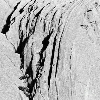 Photograph - Uluru Up Close Bw by Tim Richards