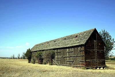 Photograph - Umatilla Barn by Craig Strand
