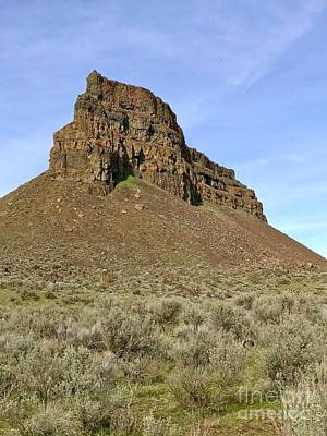 Photograph - Umatilla Rock by Sean Griffin