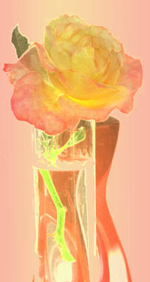 Digital Art - Umbertos Rose by Ian  MacDonald