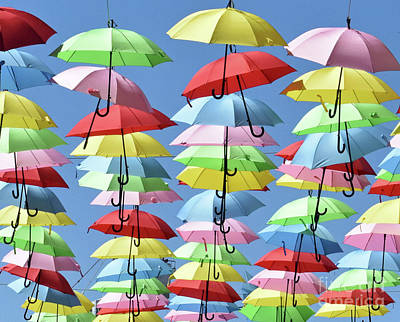 Photograph - Umbrella Delight 2 by Lydia Holly