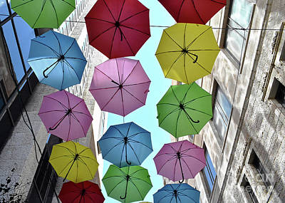 Photograph - Umbrella Delight by Lydia Holly
