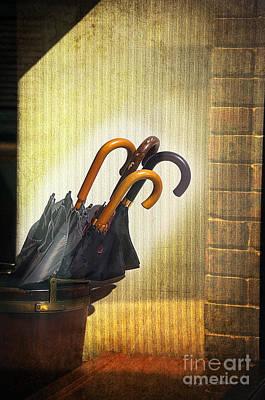 Photograph - Umbrella Four by Craig J Satterlee
