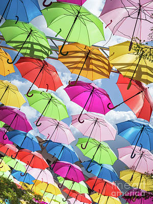 Photograph - Umbrella Sky by Robin Zygelman