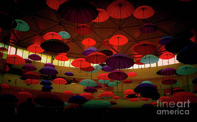 Photograph - Umbrellas 3 by Camille Pascoe