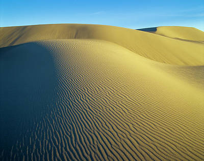 Photograph - Umpqua High Dunes by Robert Potts