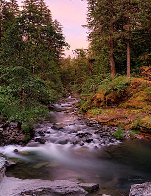 Photograph - Umpqua River Sunset by Leland D Howard