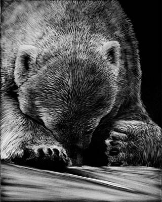 Drawing - Un-bearable by Heather Ward