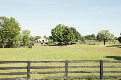 Photograph - Unbridled Farm by Pamela Williams