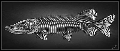 Northern Pike Drawing - Undead Pike by Nick Laferriere