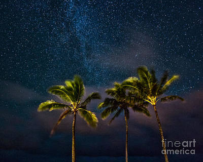 Photograph - Under A Hawaiian Sky by Anthony Bonafede