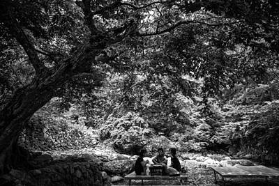 Photograph - Under A Tree by Martin Bennie