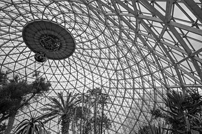 Photograph - Under Dome by Susan  McMenamin