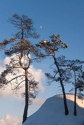 Photograph - Under Moon And Above The Clouds by Jenny Rainbow