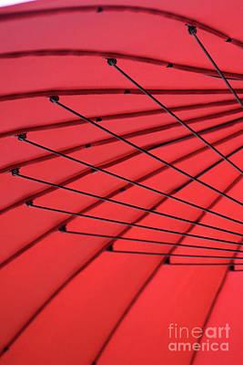 Photograph - Under My Red Umbrella by Karen Adams