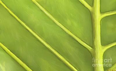 Impressionist Landscapes - Under Palm by Scott Smith