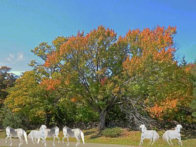Digital Art - Under The Autumn Maple Tree by Patricia Keller