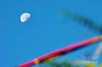 Under The Blue Sky Original