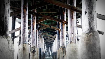 Photograph - Under The Boardwalk by Laurie Pike