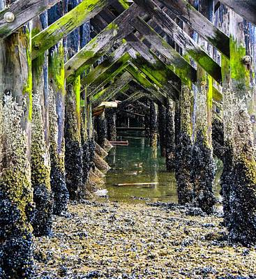 Photograph - Under The Boardwalk  by Rand