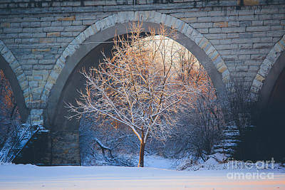 Photograph - Under The Bridge, A Winter's Song by Viviana Nadowski