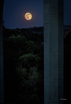 Photograph - Under The Bridge By The Light Of The Moon by Tim Bryan