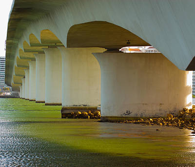 Photograph - Under The Bridge by Richard Goldman