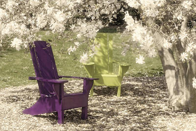 Two Photograph - Under The Magnolia Tree by Tom Mc Nemar