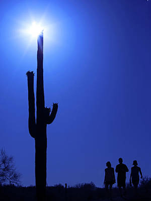 Photograph - Under The Mighty Saguaro by Sue Cullumber