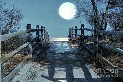 Photograph - Under The Moonbeams by Judy Palkimas