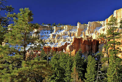 Photograph - Under The Rim On Navajo Loop Trail Bryce by Ed  Riche