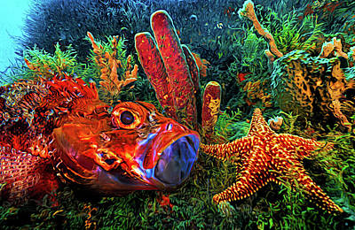 Photograph - Under The Sea At The Reef Expressionism Painting by Debra and Dave Vanderlaan