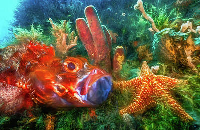 Photograph - Under The Sea At The Reef Watercolor Painting by Debra and Dave Vanderlaan