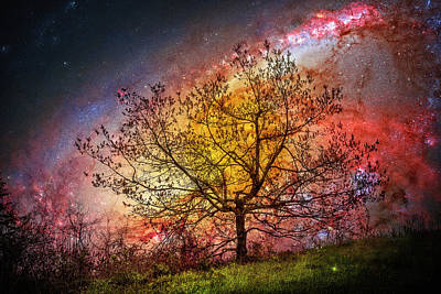 Photograph - Under The Starry Sky by Debra and Dave Vanderlaan