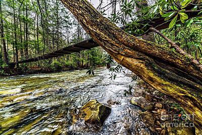 Photograph - Under The Swinging Bridge by Thomas R Fletcher