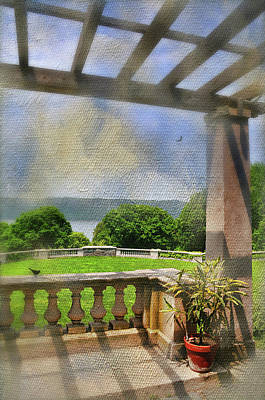 Under The Trellis Print by Diana Angstadt