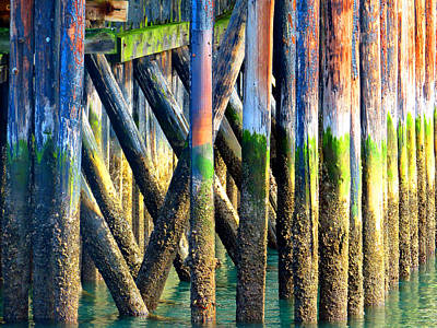 Photograph - Under The Wharf Port Townsend Washington by Marie Jamieson