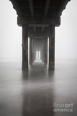 Photograph - Under The Pier by Dennis Hedberg