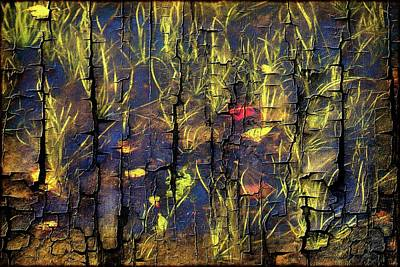 Photograph - Under Water--cracked Look by Sherman Perry
