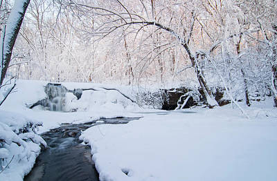 Photograph - Under Winter's Blanket 3 by Joe Miller