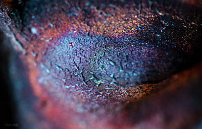 Photograph - Under Your Skin II by Sandra Parlow