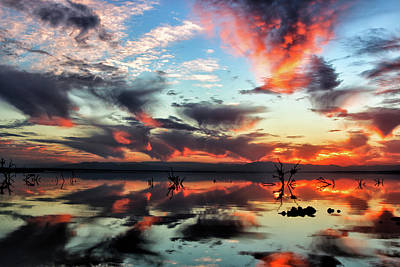 Art Print featuring the photograph Underneath The Salton Sky by Mike Trueblood