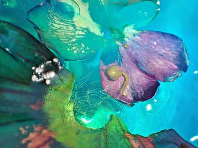 Photograph - Underwater Flower Abstraction 4 by Lorella Schoales