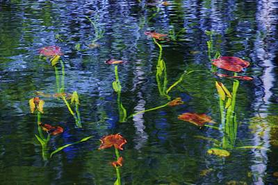 Underwater Lilies Art Print by Sean Sarsfield