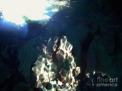 Photograph - Underwater Looking Up by D Hackett