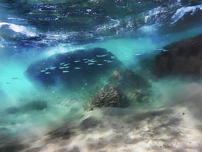 Photograph - Underwater by Meir Ezrachi
