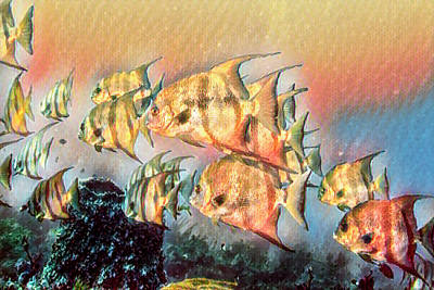 Photograph - Underwater Rainbow Of Golden Watercolors by Debra and Dave Vanderlaan
