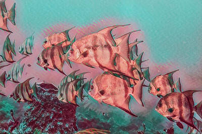 Photograph - Underwater Rainbow Of Peach And Aqua Watercolors by Debra and Dave Vanderlaan