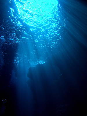 Undersea Photograph - Underwater Sunlight by Takau99