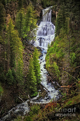 Photograph - Undine Falls, Yellowstone National Park by Craig J Satterlee